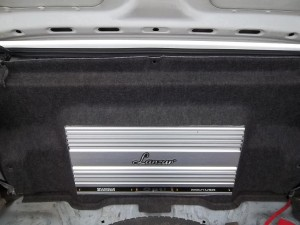 DSBassBall Rear Amp